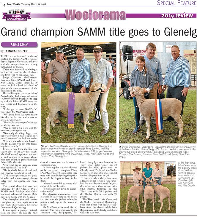 Grand Champion SAMM title goes to Glenelg - Wagin Woolorama 2019