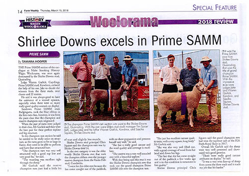 Shirlee Downs excels in Prime SAMM - Wagin Woolorama 2018
