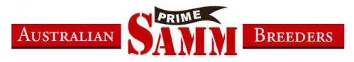 Prime SAMM Breeders Association of Australia